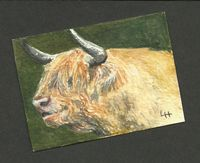 Small Painting - Highland Cattle