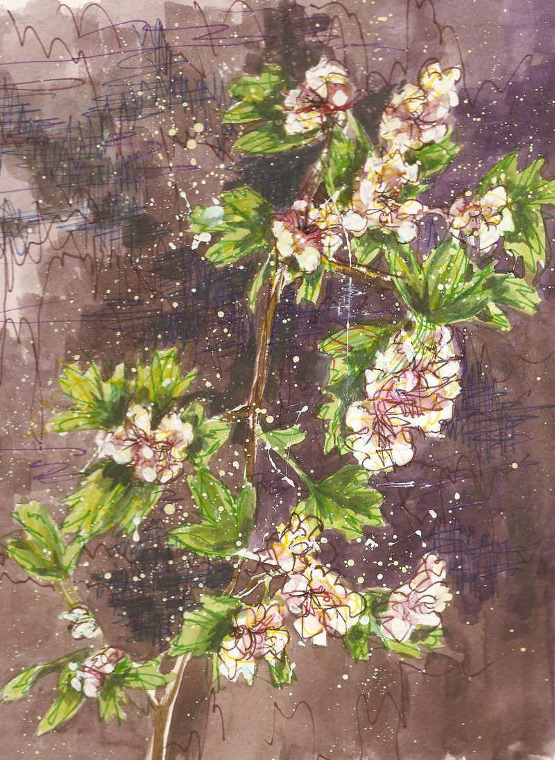 Painting - Flowering Shrub