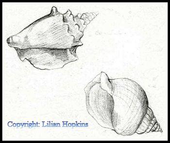 Sketch Shells 3