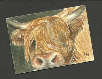 ACEO: Highlanders Series 2 no 4