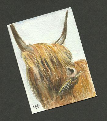ACEO: Highlanders Series 2 no 5