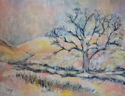 Snow Scene - Brecon Beacons
