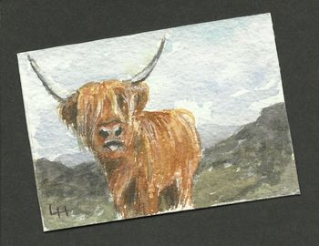 ACEO: Highlanders Series2 no 3